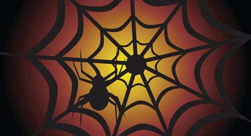 Spiders on a eerie web