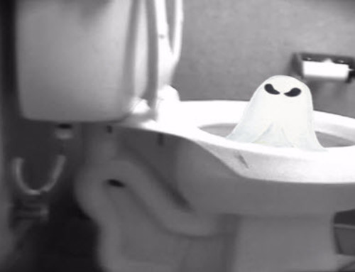 A Ghost inside a Toliet?