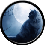 Black Cat looking at the Moon