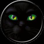 Black Cat - Eyes